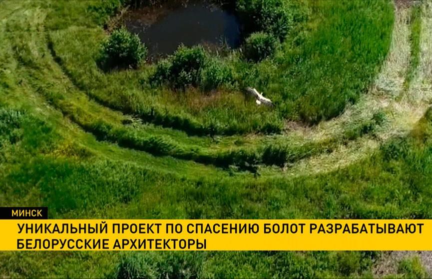 Белорусские архитекторы разрабатывают проект по спасению болот.
