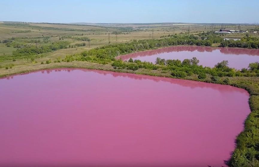«Гламурные» озёра под Самарой удивляют ярко-розовым цветом воды