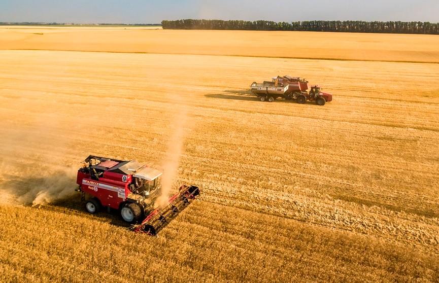 Куба заинтересована в закупке белорусской техники для сельского хозяйства
