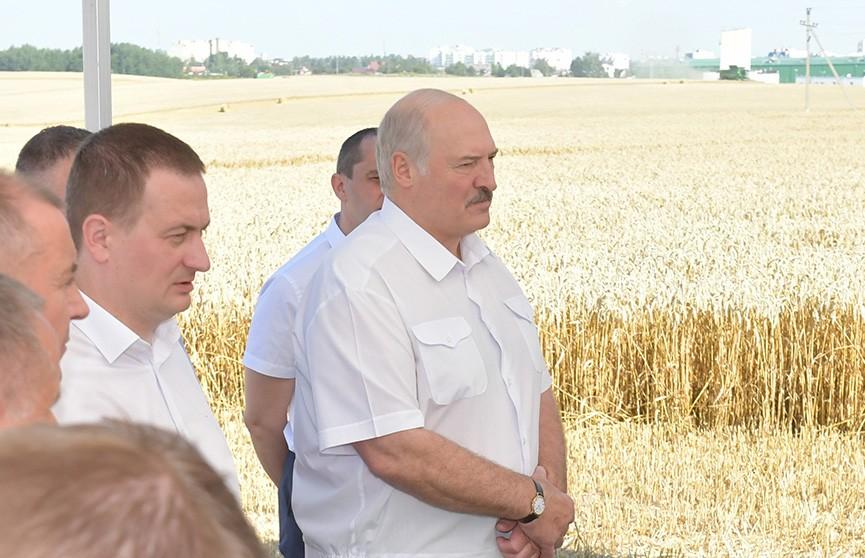 Лукашенко ознакомился с ходом уборочной кампании в Минском районе