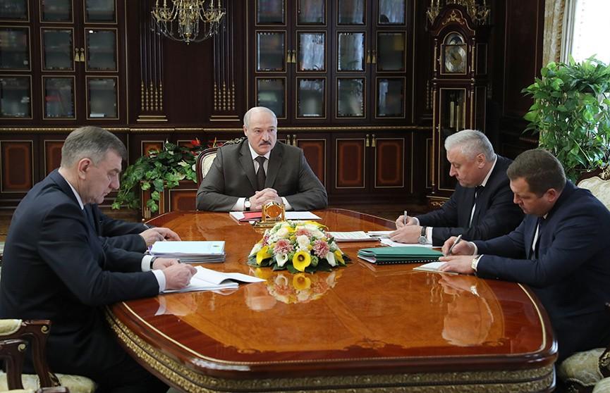 Лукашенко: Лес – это ресурс, который мы должны использовать рачительно. Итоги совещания у Президента по лесной отрасли