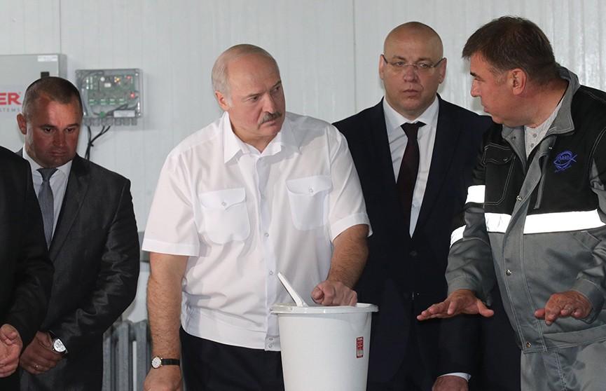 Александр Лукашенко посещает Костюковичский район. Первая остановка – форелевое хозяйство