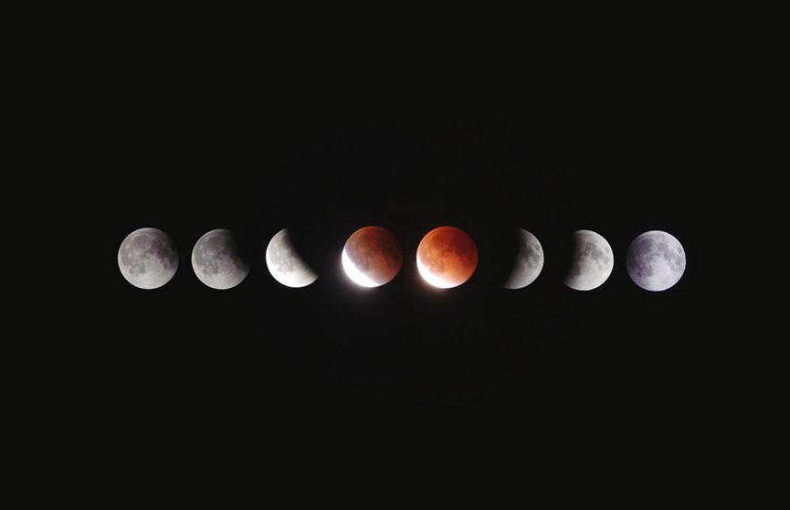 Лунный календарь с 13 по 19 апреля. Пора садить огород