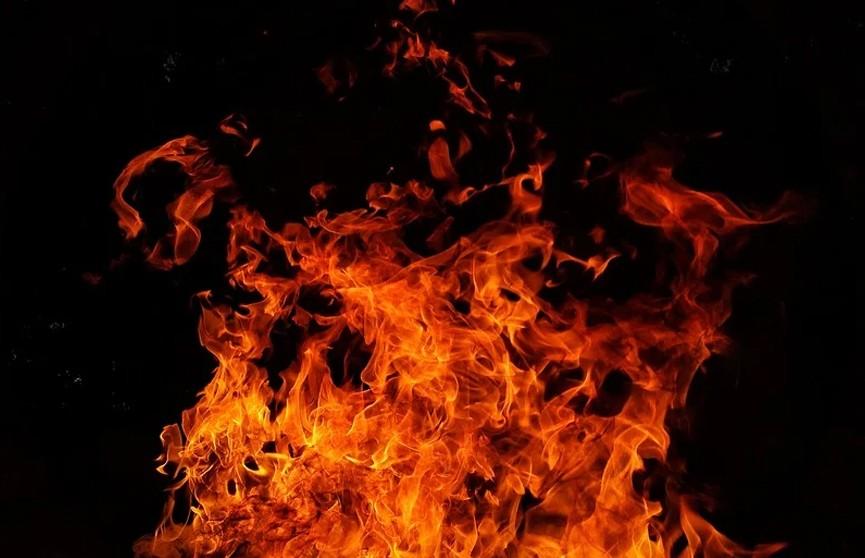 Гости в панике сбежали с охваченной огнем свадьбы