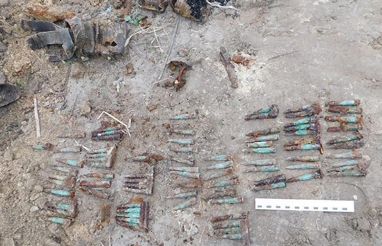 Человеческие кости и патроны нашёл у себя на участке житель Брестского района