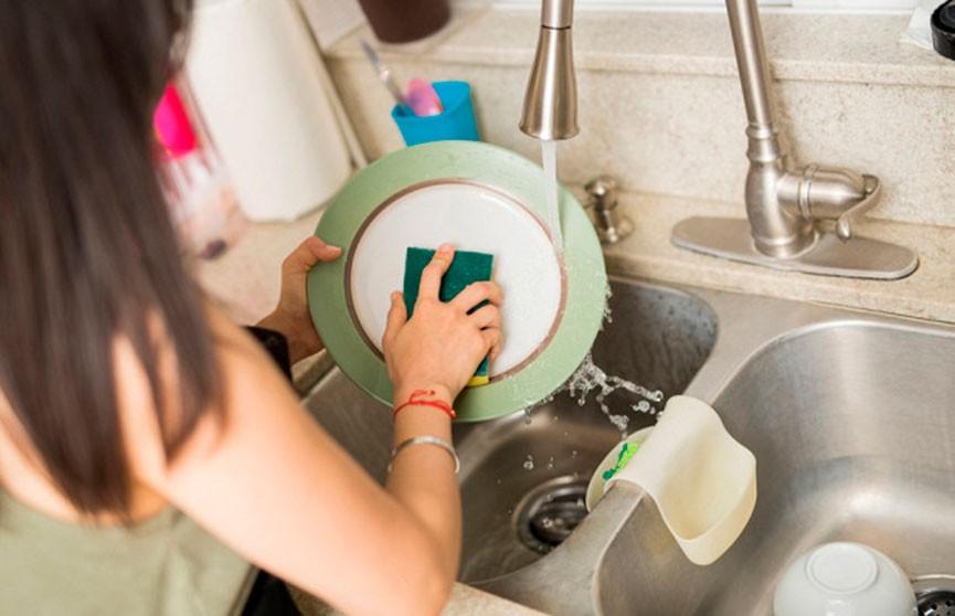Губки для мытья посуды могут вызывать опасные инфекции