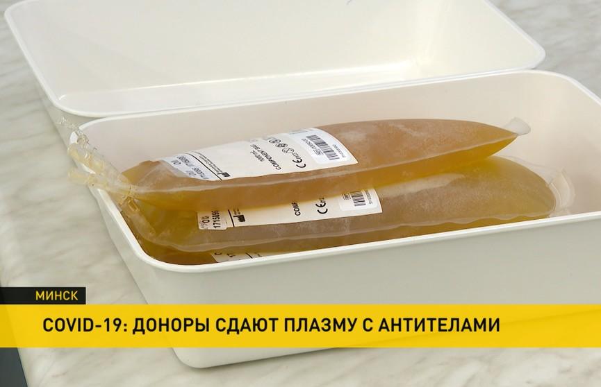 COVID-19 в Беларуси: медики призывают доноров сдать плазму с антителами