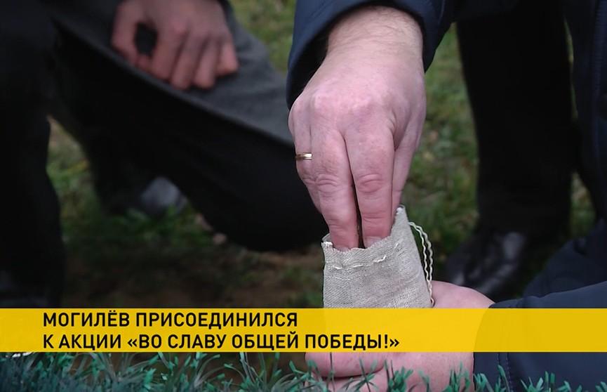 Могилев присоединится к республиканской патриотической акции «Во славу общей Победы»
