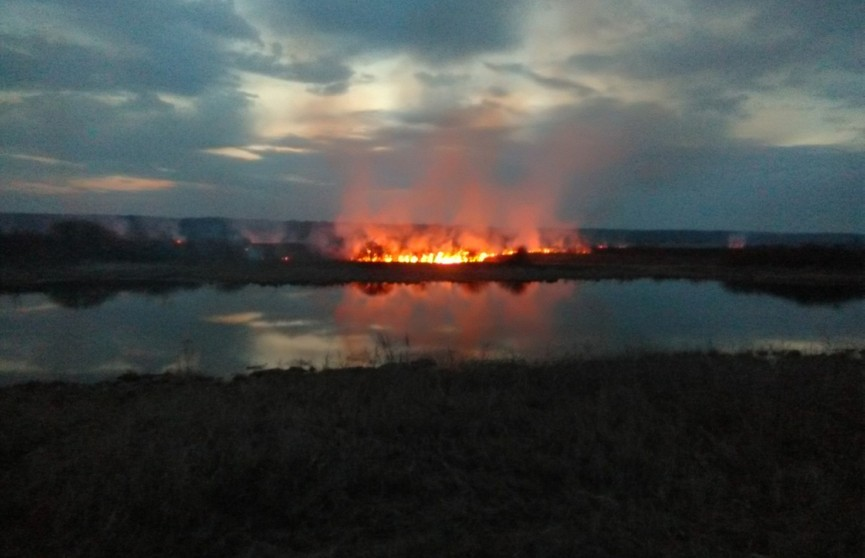 Пять дачных домов сгорели из-за палов травы в Гомельской области