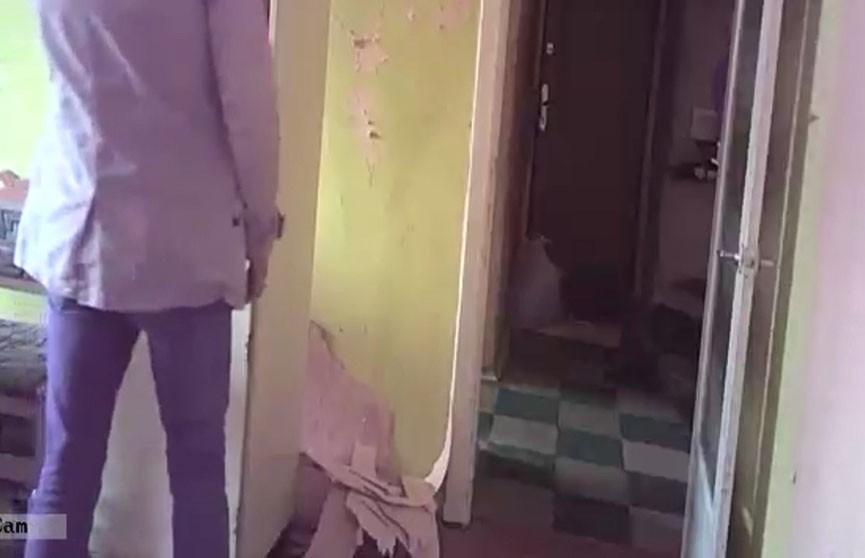Загадка запертой квартиры. Череду таинственных исчезновений имущества помогла разгадать видеоловушка