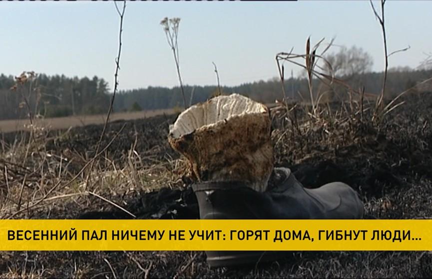 Весенний пал травы становится причиной крупных пожаров и гибели людей