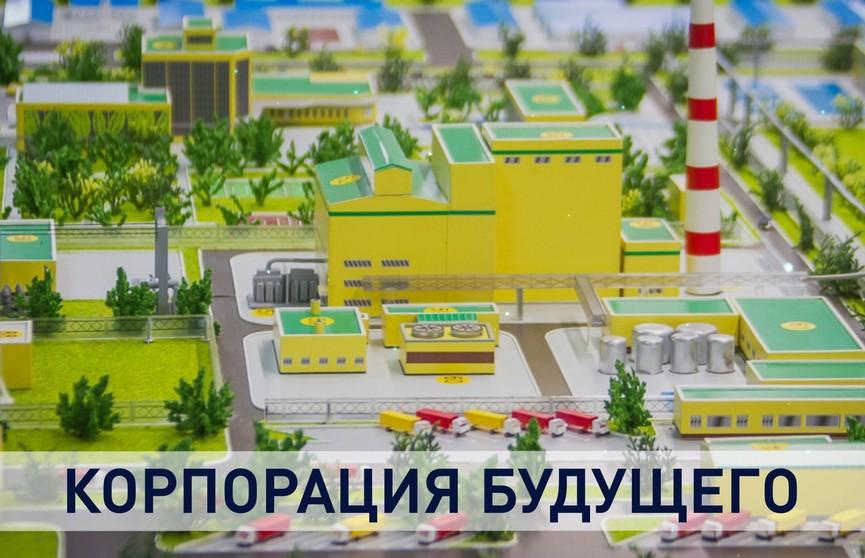 Строительство Белорусской национальной биотехнологической корпорации началось в Пуховичском районе. Что это за проект и почему с ним связывают будущее белорусского сельского хозяйства?