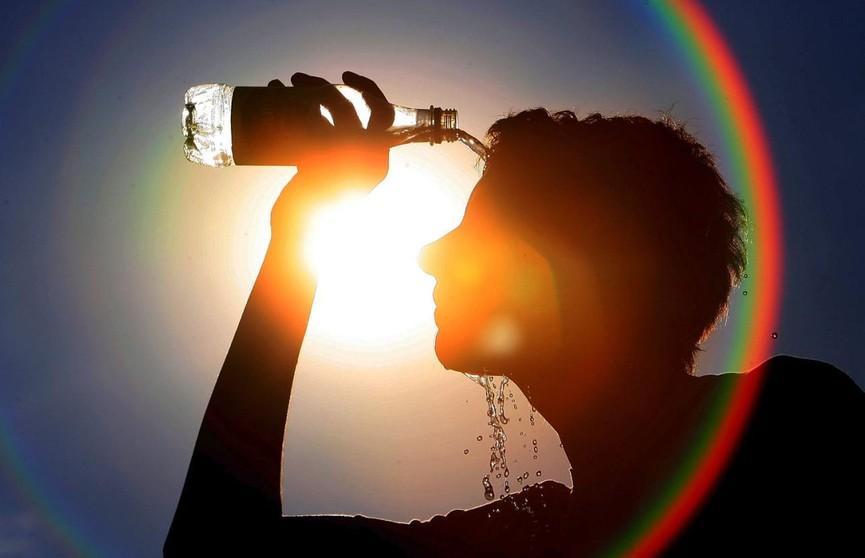Во Франции около 1,5 тысячи человек погибли из-за аномальной жары этим летом