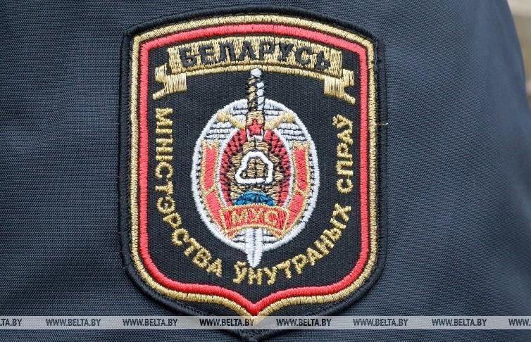 В Микашевичах задержан серийный вор