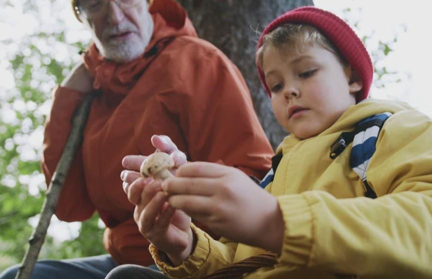 Как не отравиться в грибной сезон? Рассказывают специалисты