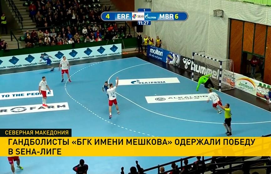БГК имени Мешкова обыграл «Еурофарм»в матче группового этапа СЕХА-лиги