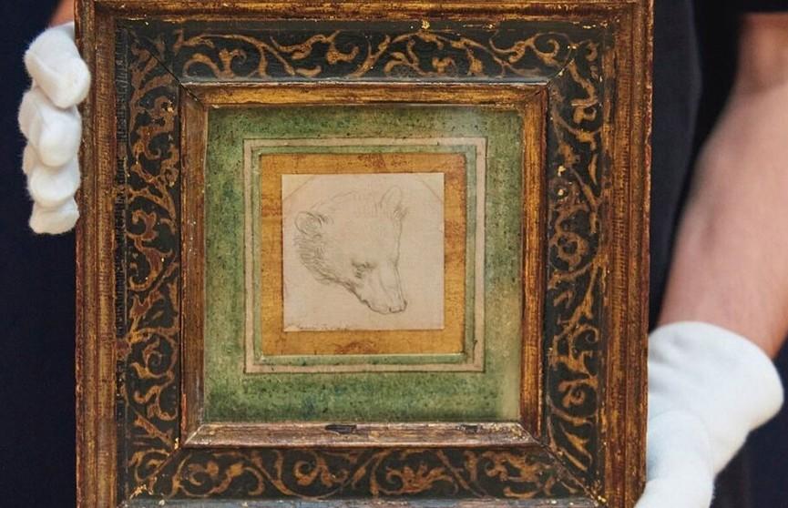 Рисунок головы медведя, сделанный Леонардо да Винчи, продали за рекордные 8,9 миллиона фунтов