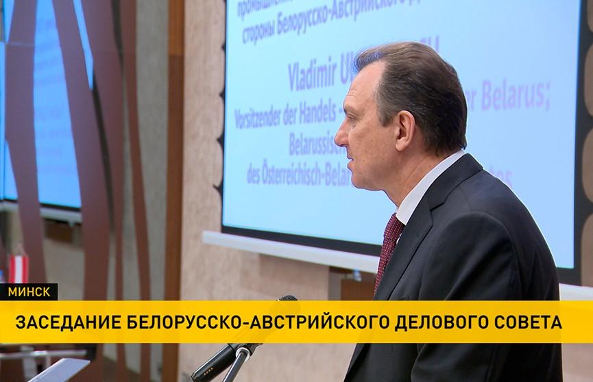 Новые белорусско-австрийские проекты обсуждались на  деловом совете в Минске
