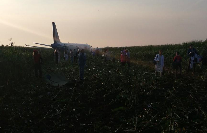 Пассажир Airbus А321 снял на видео жесткую посадку самолета на поле в Жуковском