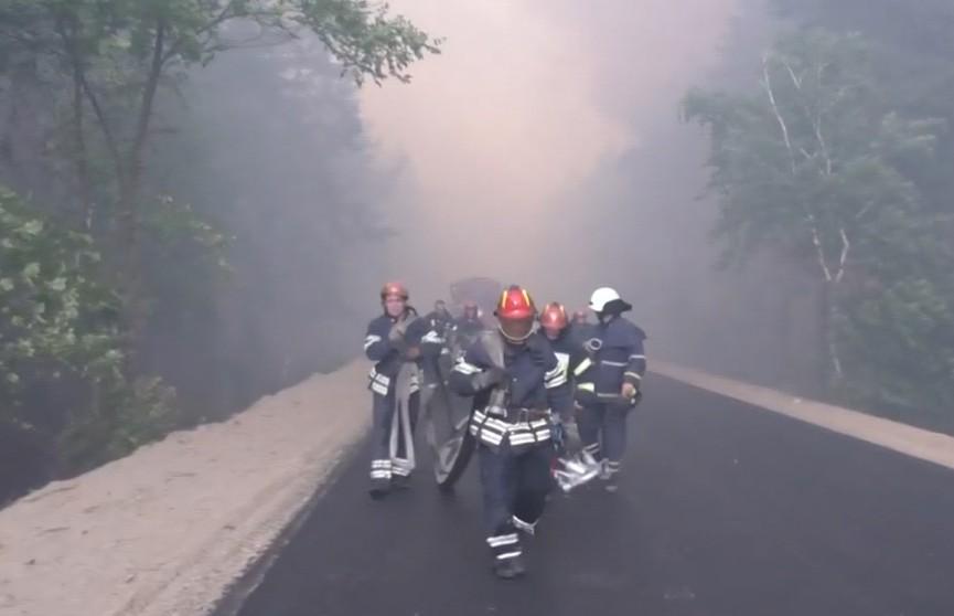 В Луганской области полыхают лесные пожары