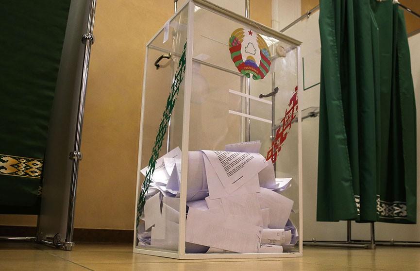 Подведены итоги выборов в Совет Республики