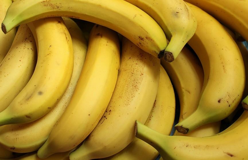 Под Новолукомлем собирают урожай бананов