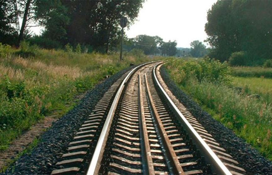 Под Ляховичами поезд сбил пьяного мужчину