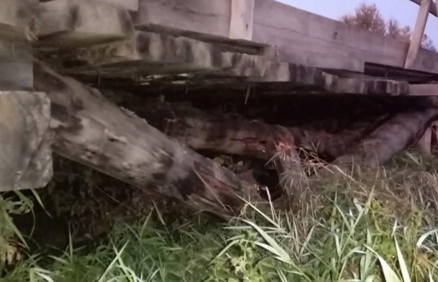 Деревянный мост развалился в Гомельской области