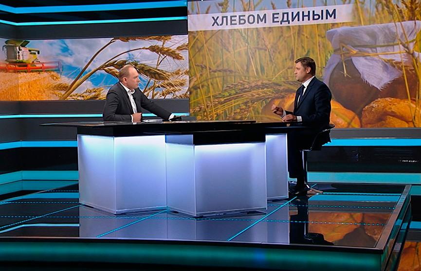 Уборочная-2020: рекордный урожай в Беларуси и перспективы нашего продовольственного экспорта