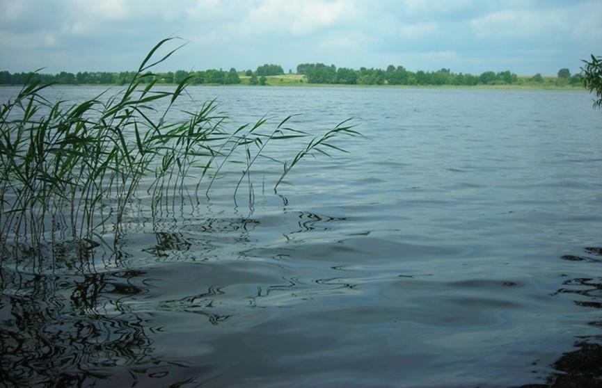 Мужчина утонул в озере, спасая мать