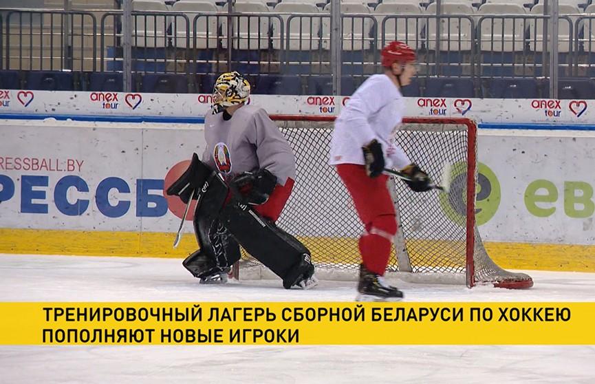 Состав сборной Беларуси по хоккею пополняют игроки из североамериканских лиг