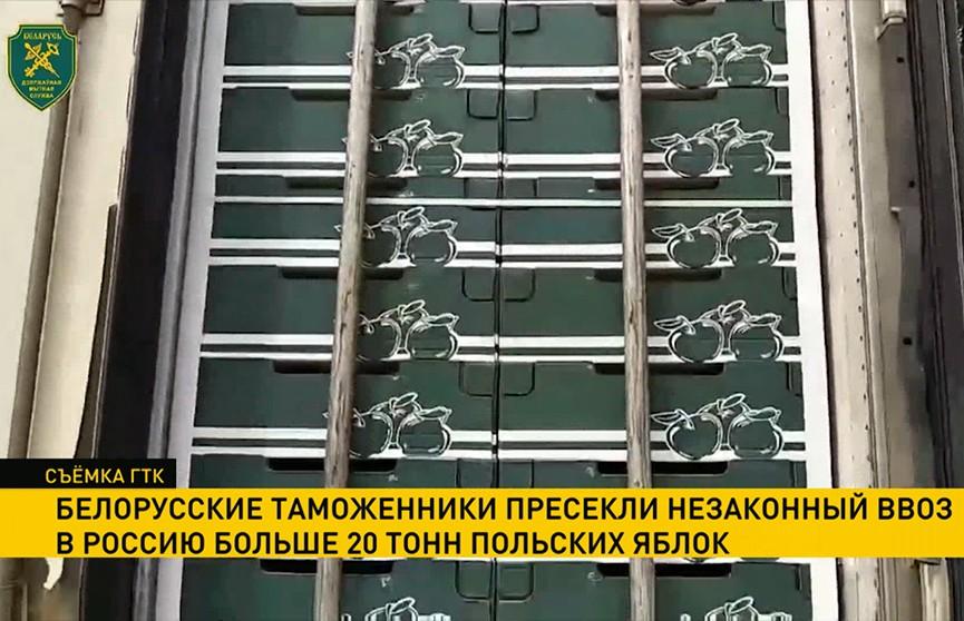 Белорусские таможенники пресекли незаконный ввоз в Россию польских яблок