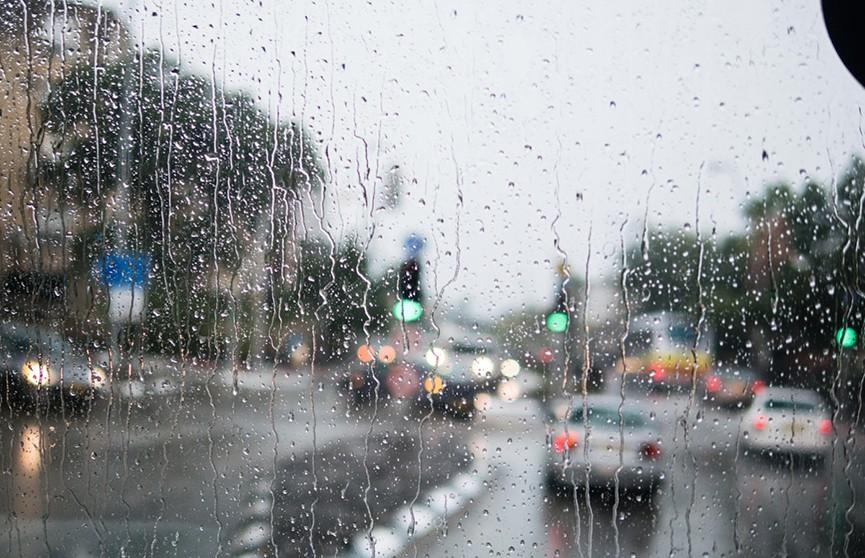 Дождливые выходные: прохладная и ветреная погода ждёт белорусов