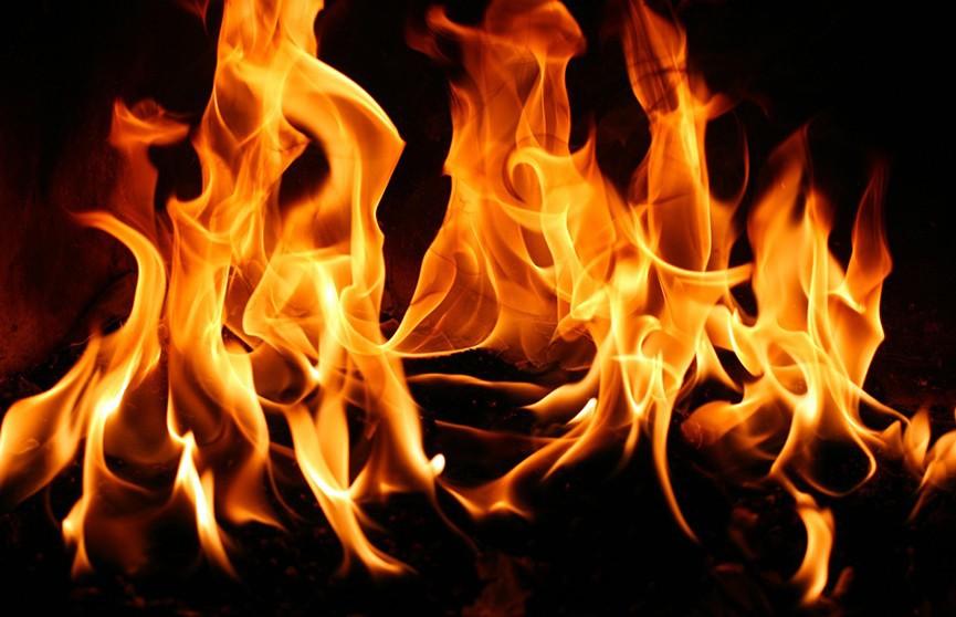 Пожар в Верхнедвинском районе: погиб пенсионер