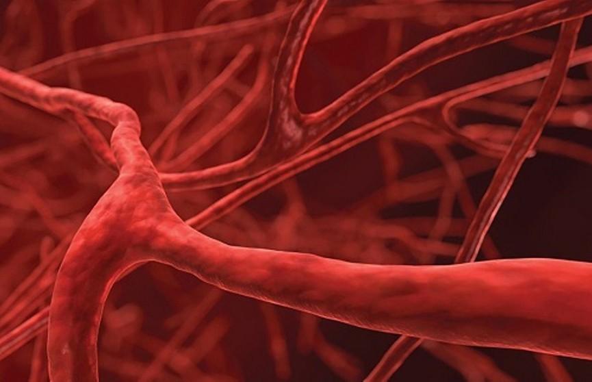 Ученые назвали 4 угрозы для здоровья сосудов