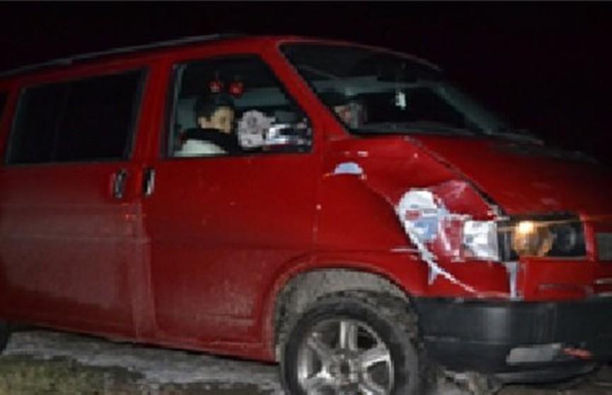 ДТП под Брестом: микроавтобус сбил пешехода на нерегулируемом переходе