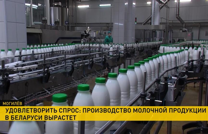 В Беларуси увеличат производство молока