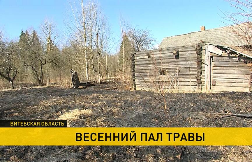 В Витебской и Могилевской областях люди погибли при выжигании травы на участках