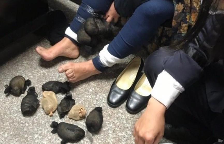 Женщина пыталась попасть в самолёт, привязав два десятка грызунов к ногам