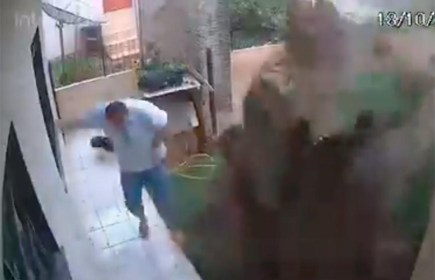 Бразилец взорвал собственный двор, пытаясь избавиться от нашествия тараканов