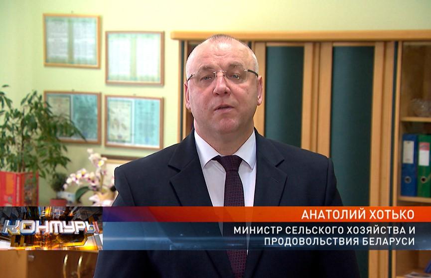 Глава Минсельхозпрода Анатолий Хотько – о последствиях аномально теплой зимы и экспорте белорусской сельхозпродукции