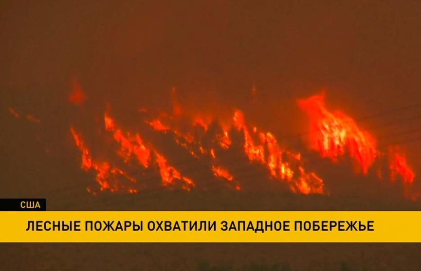Лесные пожары в США: 600 кв. км горит в Орегоне