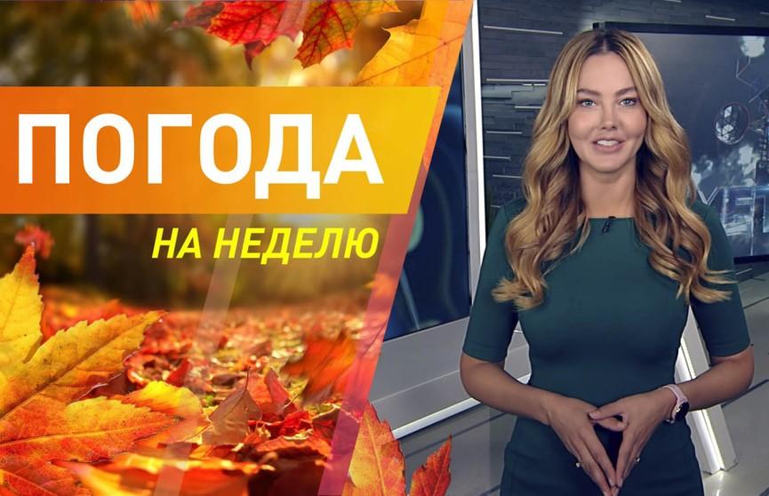 Потеплеет ли в Беларуси? Погода на неделю с 20 по 26 сентября. Подробный прогноз