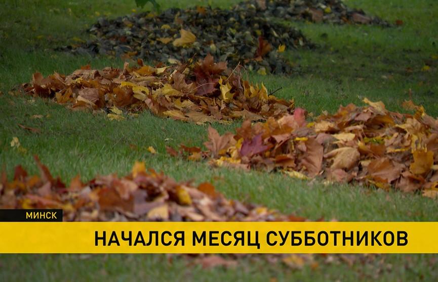 Субботники прошли во всех районах Минска