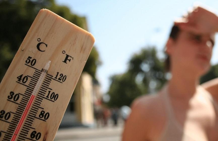 400 человек скончались от аномальной жары в Нидерландах