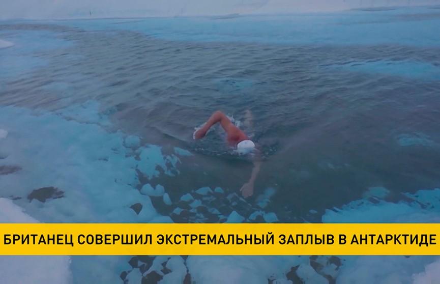 50-летний британец совершил экстремальный заплыв под ледником Антарктики