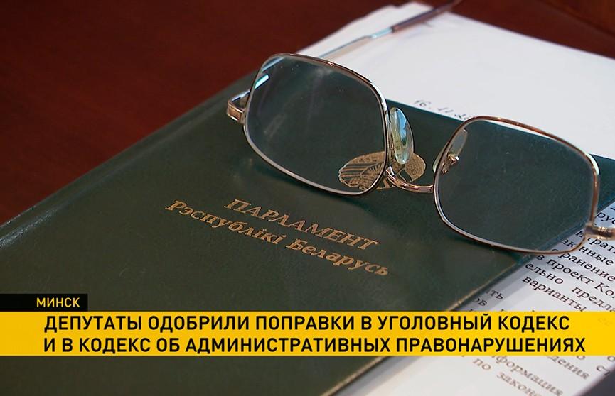 Депутаты Палаты представителей одобрили поправки в Уголовный кодекс