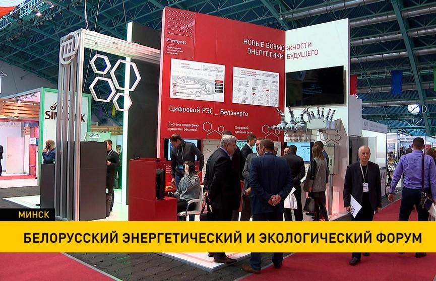 Белорусский энергетический и экологический форум продолжается в Минске
