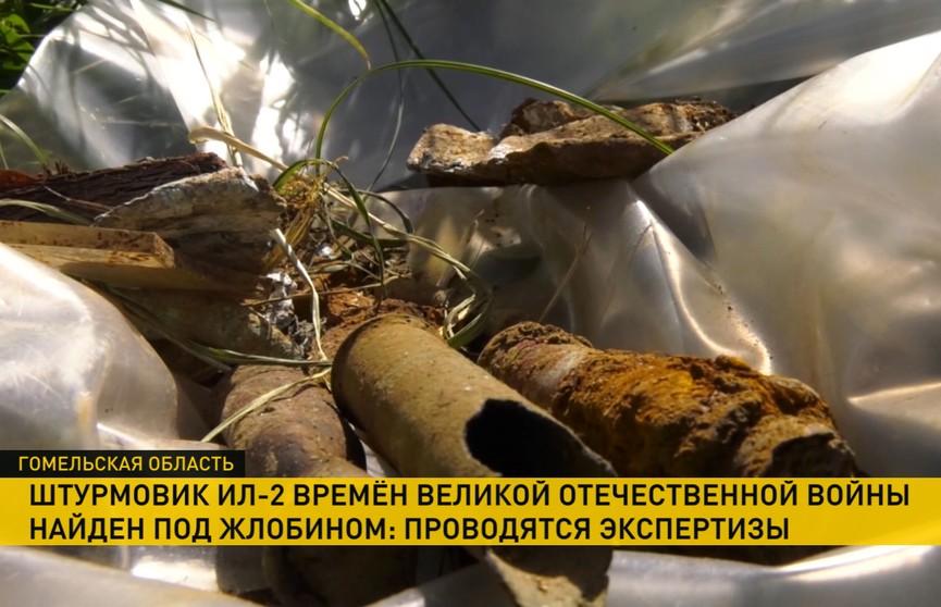 Человеческие останки обнаружены в боевом штурмовике Ил-2, сбитом в 1943 году под Жлобином