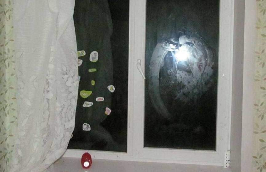 Трехлетняя девочка выпала из окна в Жабинковском районе